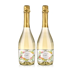 西班牙(原瓶进口)花恋语半甜白起泡葡萄酒750ml(双瓶装)
