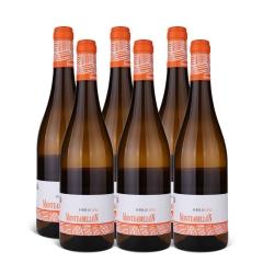 13°西班牙原瓶进口咏山庄园弗德乔干白葡萄酒750ml(6瓶装)