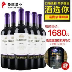 干露酒庄 智选梅洛干红葡萄酒750ml*6 智利原瓶进口