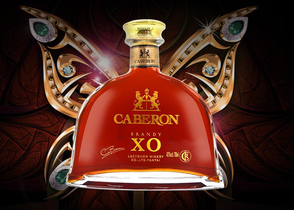 xo_40°法国原酒进口洋酒 尚爵xo白兰地700ml 洋酒礼盒